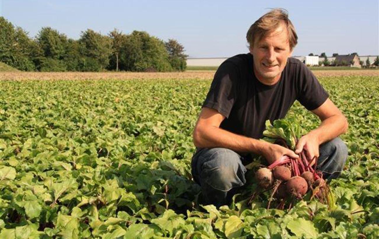 Piet van Andel