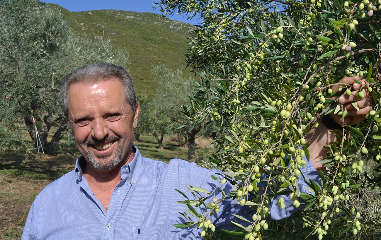 Panagiotis Dimitrakopoulos