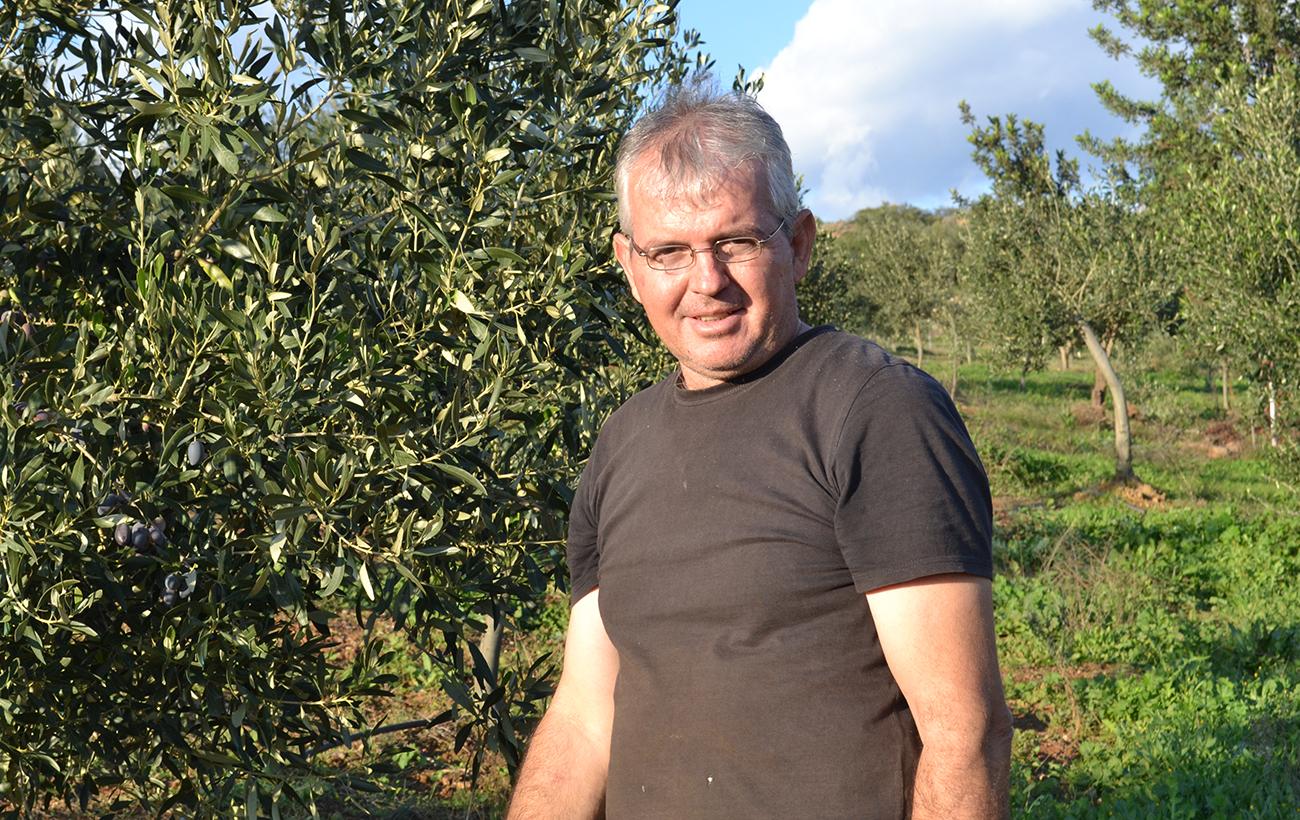 Olivenpaste aus Kalamata-Oliven