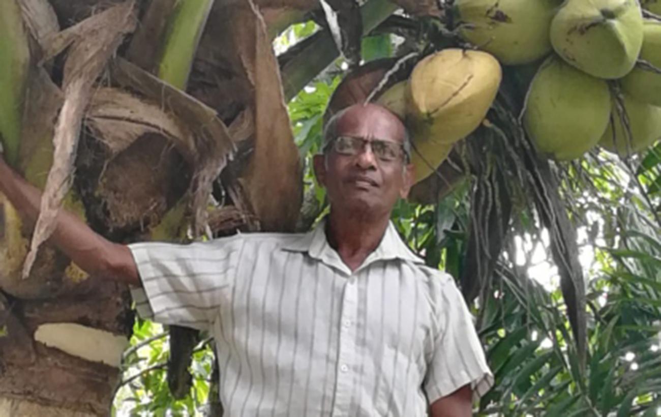 Kokosöl, nativ, 400 g